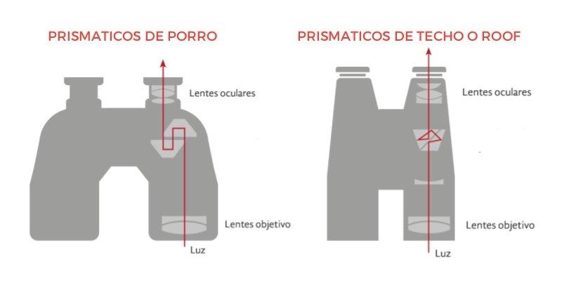 qué prismáticos comprar de porro o techo