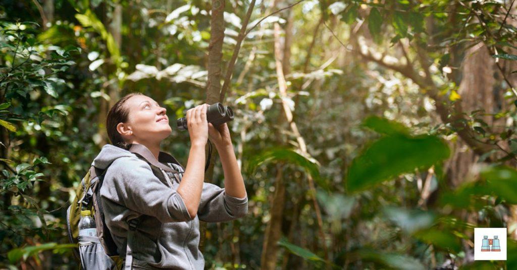 binoculares para ver aves