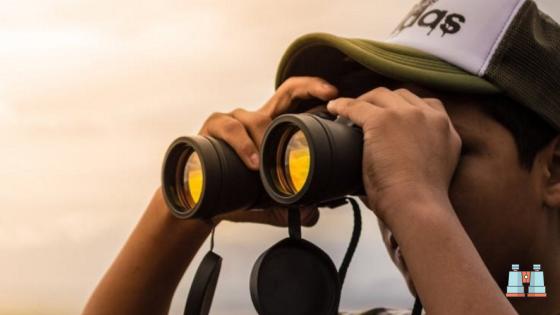 pupila de salida para saber donde comprar prismáticos